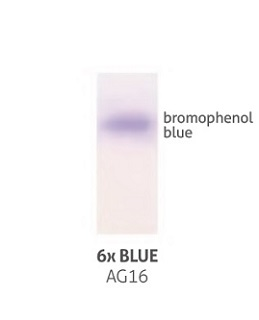 6x-Blue.jpg