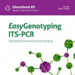 EasyGenotyping ITS PCR – genotypowanie szczepów bakteryjnych metodą rybotypowania (DY62)