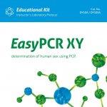 EasyPCR XY – oznaczanie płci człowieka przy użyciu PCR (DY10A)
