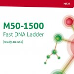 M50-1500 Fast DNA Ladder (gotowy do użycia) (MR27)