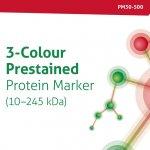 3-Colour Prestained Protein Marker (10–245 kDa)