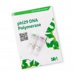 Polimeraza DNA phi29 (EN20)