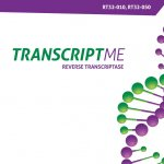 TRANSCRIPTME Reverse Transcriptase (RT32)